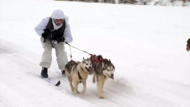 俄羅斯國防部2日釋出影片,秀出士兵與西伯利亞哈士奇與雪橇犬一同進行軍事訓練的畫面。影片不時穿插著哈士奇各種搞笑嗯哈的奇特叫聲,讓嚴肅的軍事訓練多帶了點額外的趣味。路透