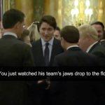 影片曝光 英法加領袖私下嘲諷 川普暴怒離北約峰會