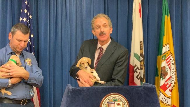 洛杉磯市檢察長富爾(右)懷抱小狗,提醒民眾切莫上當。(記者王子銘/攝影)