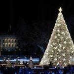 任內第三次!國家耶誕樹點燈 川普致詞