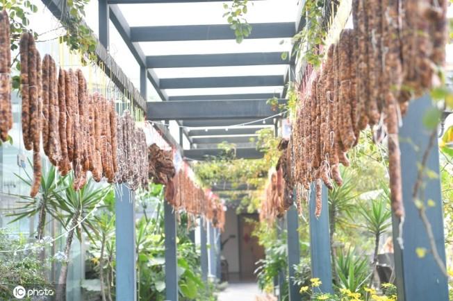 掛滿了香腸臘肉的走廊。(取材自微博╱東方IC圖)