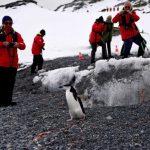 南極郵輪行:主打生態觀光 每人卻製造5噸碳排放