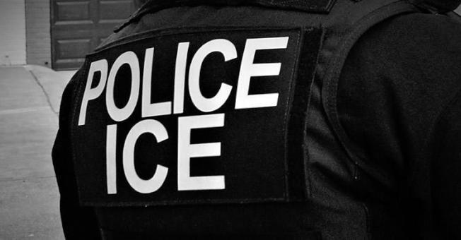 ICE在紐約五日行動中逮捕12名國際通緝犯。(ICE提供)
