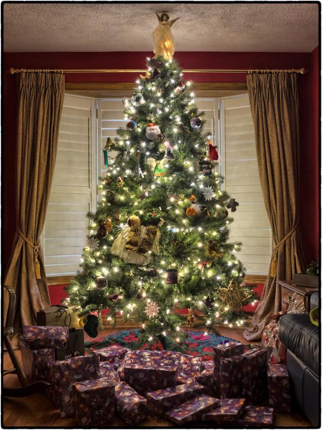 家中布置一棵耶誕樹,節慶氣氛可持續一個多月。(Pexels)