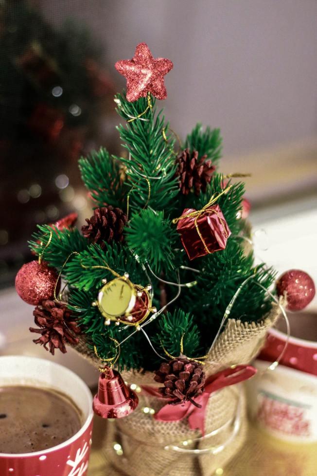 耶誕樹不論大小,都可帶來節日氣氛。(Pexels)