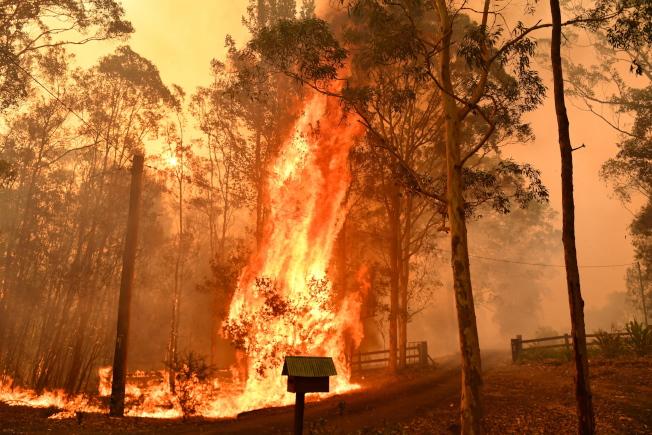 離雪梨約1小時車程的近郊森林大火持續延燒,當局警告民眾得做好逃生準備。(歐新社)