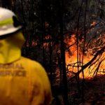 澳洲野火煙霾擴散籠罩坎培拉 高溫預報不利災情