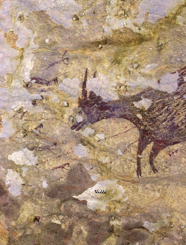 考古學家在印尼蘇拉威西一個洞穴發現4萬4000年前的壁畫。(翻攝自紐約時報)