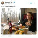 瑞典環保少女過譽了? 網友酸她:做法跟慣老闆一樣