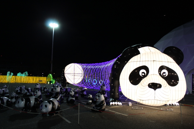 大熊貓與小熊貓。(記者劉大琪/攝影)