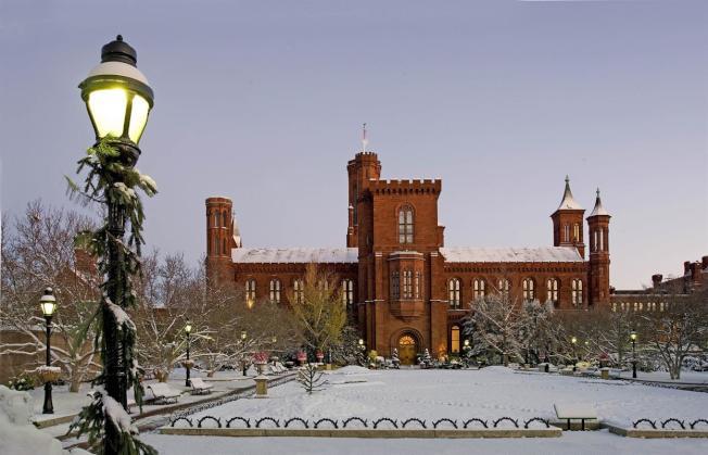 華府史密森尼學會將聯手Brightest Young Things舉辦「冬季家庭節」。(主辦方提供)