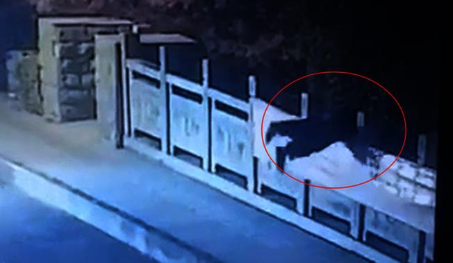 杭州下沙街道幸福南路,女孩疑似跳河輕生。(取材自齊魯晚報)