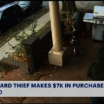佯裝派傳單趁機竊信 布碌崙男子盜信用卡 狂刷7000元