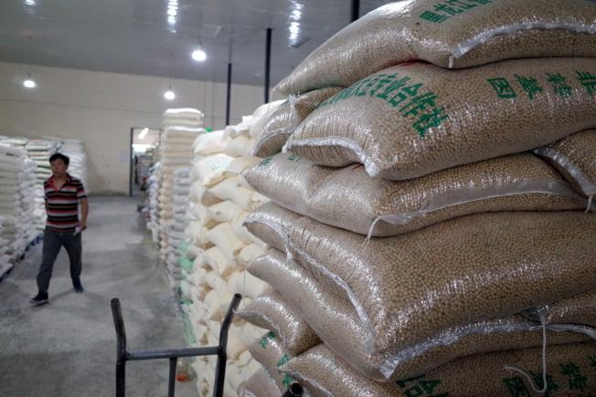 川普稱中國每年將購買500億美元農產,專家認為言過其實。圖為北京批發市場堆放的大豆。(歐新社)