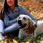 5大原因 養狗可助患者抗癌