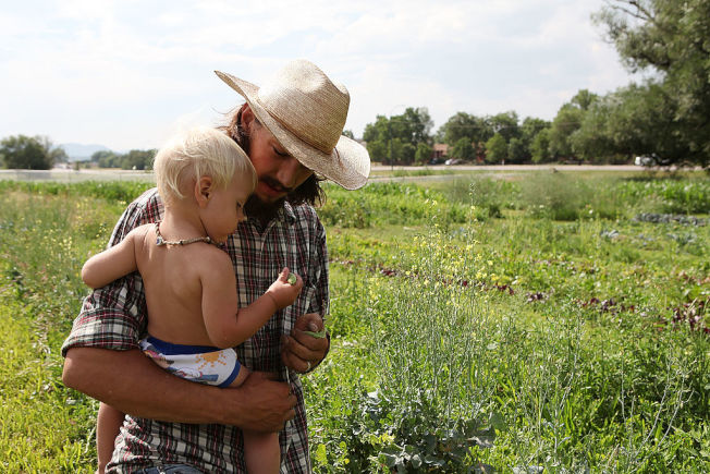 豌豆通常是作物輪作時的選項之一。(Getty Images)