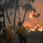 熱浪來襲野火燒不盡 澳洲新南威爾斯省發布緊急狀態