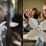 灰鸚鵡真聰明 竟啄出紙片雪花