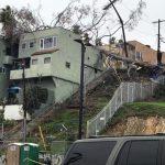 樹倒毀民房 流浪漢被困樹下