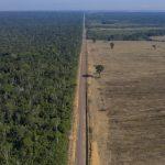 生態災難╱亞馬遜雨林瀕毀滅 恐釋出數千億噸二氧化碳 威脅人類生存