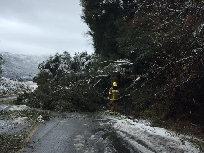 SR-76高速靠近Lake Heneshaw路段因樹木倒塌封路。(CalTrans推特圖片)