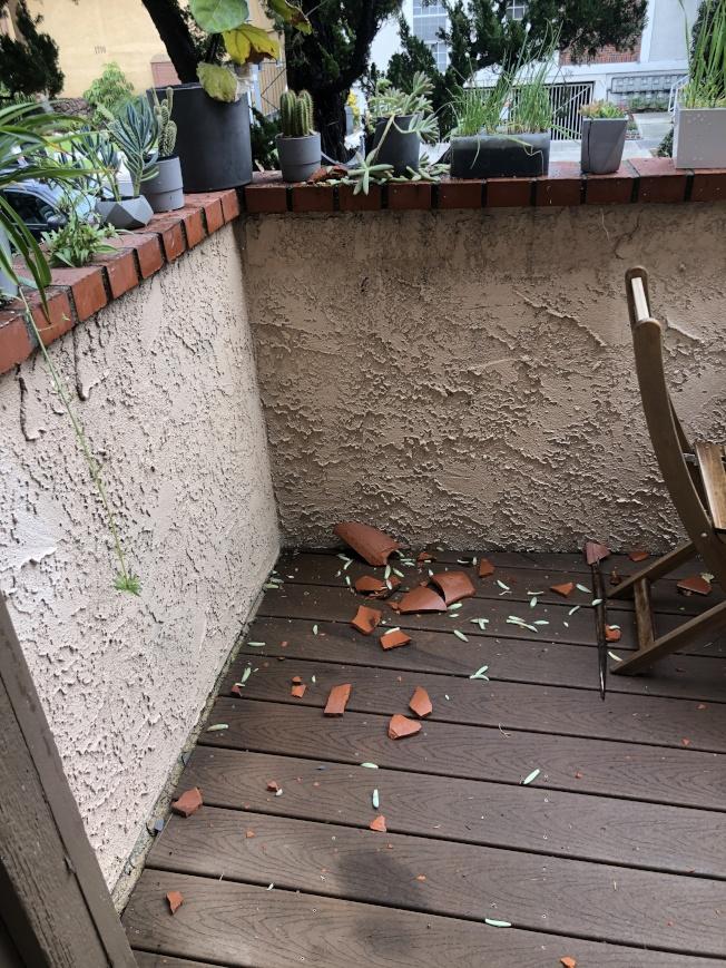 屋頂兩塊瓦片被大風刮飛,摔在露台上,砸碎花盆。(記者李雪/攝影)