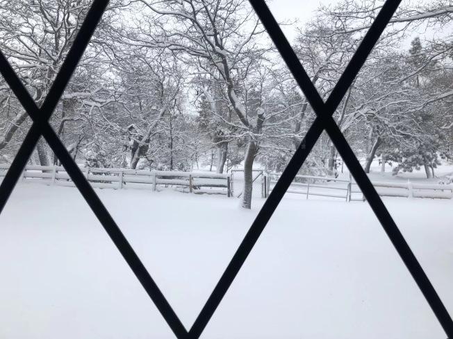 箭頭湖大雪美景。(讀者提供)