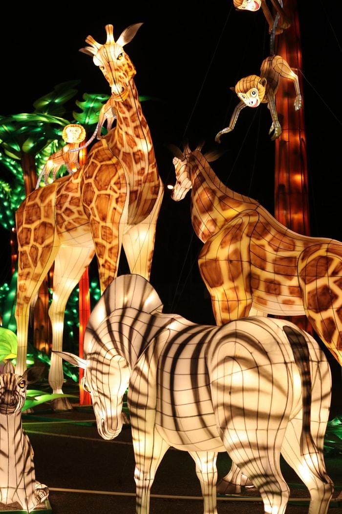 動物彩燈栩栩如生。記者何卓賢/攝影