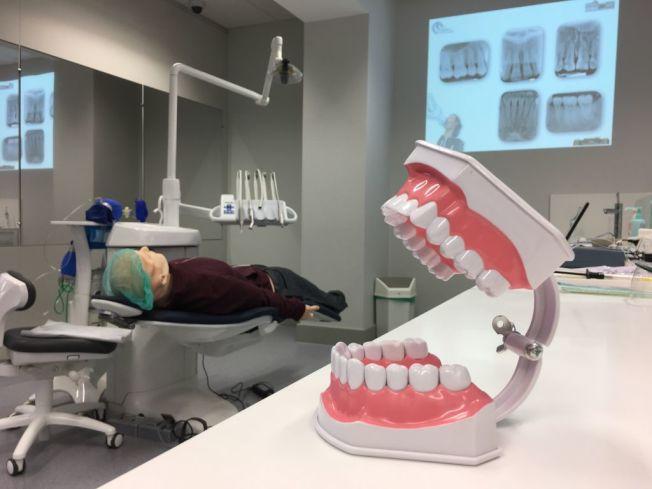裝假牙或植牙要價從400元到8000元不等。(Getty Images)
