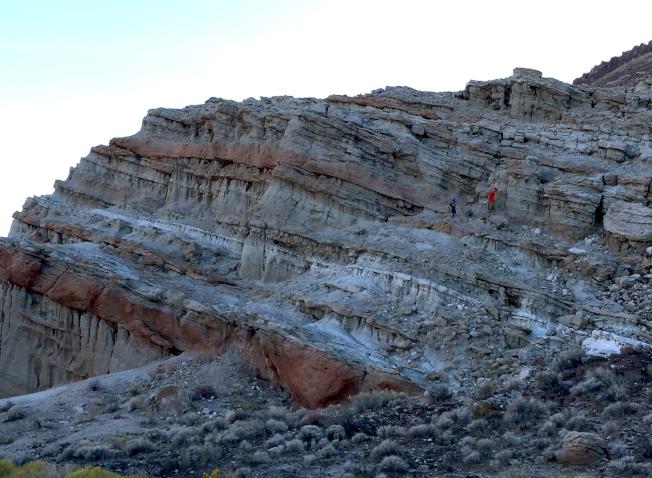 岩層就像一本地史書卷,化石是文字插圖,描繪著河湖分布和生物的繁盛絕滅。