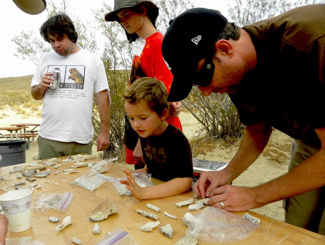 孩童似乎在問:請問我找到的這塊化石,是什麽動物的哪一塊骨頭?