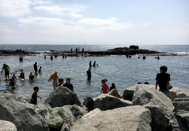 白角礫石海灘的潮間帶,是孩童們尋生物寶藏的地方。