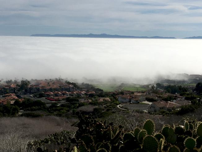 雲海低沉填滿海峽,連接了PV和卡塔利娜島。