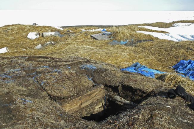 阿拉斯加波因特霍普市的一處冰窖已經融化,露出綠色植被。(美聯社)