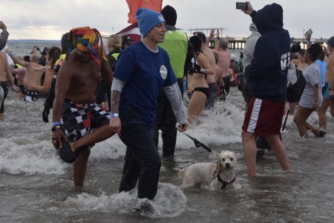 元旦冬泳挑戰,連狗狗都要突破自己、迎接新一年。(記者顏潔恩/攝影)