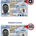 駕照轉「真實身分證」方可搭機  排除無證客