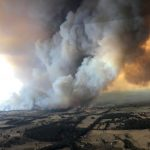 澳洲氣候條件 成野火燃燒最佳環境