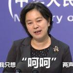 呵呵、加戲、甩鍋英文怎說?中國外交部秀「神翻譯」