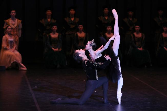 古典優美的「黑天鵝」雙人舞,讓男女主角的表現獲譽無數。(上海芭蕾舞團提供)