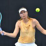 澳網╱排名不夠 莎娃仍獲外卡第16度參賽