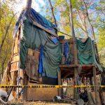 三層高遊民樹屋 遭清除