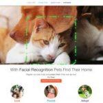 動物收容所刷臉應用程式找寵物