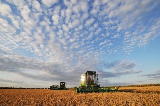 美國現象|我的「天」哎…暖化傷果農