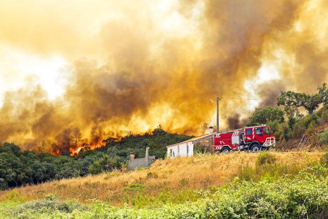 一般的房屋保險,理賠範圍通常都包括山火、竊盜等災害。(華興保險官網)