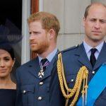 斷絕兄弟關係?威廉王子發聲 跟哈利是「分開的實體」