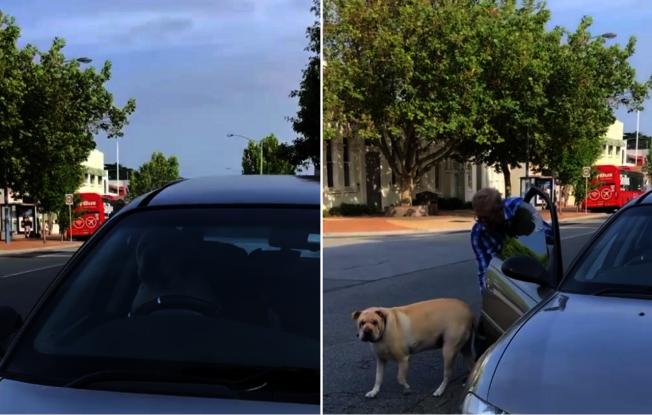 澳洲墨爾本南部莫寧頓地區有一隻混血沙皮狗,疑似不滿被自家主人下車辦事拖太久,居然使出殺手鐧,跳上駕駛座,狂按喇叭,硬是把飼主從店裡給逼出來,把牠從車子裡放出來,整個爆笑過程全被路人拍攝下來。