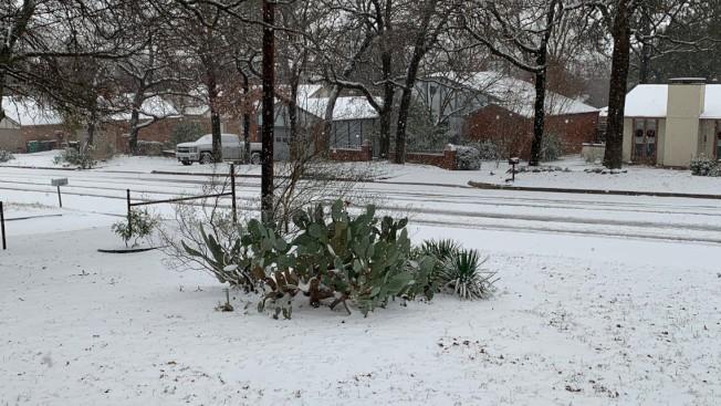 丹頓住宅區落雪,居民醒來獲驚喜。(ABC8電視台)