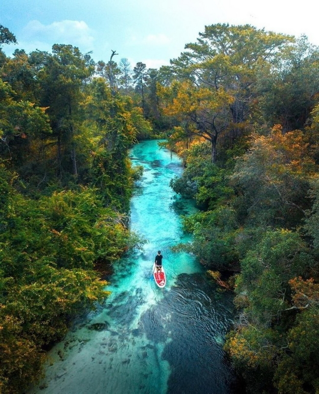 佛州可供划船的泉流公園之一。(佛州旅遊局提供)