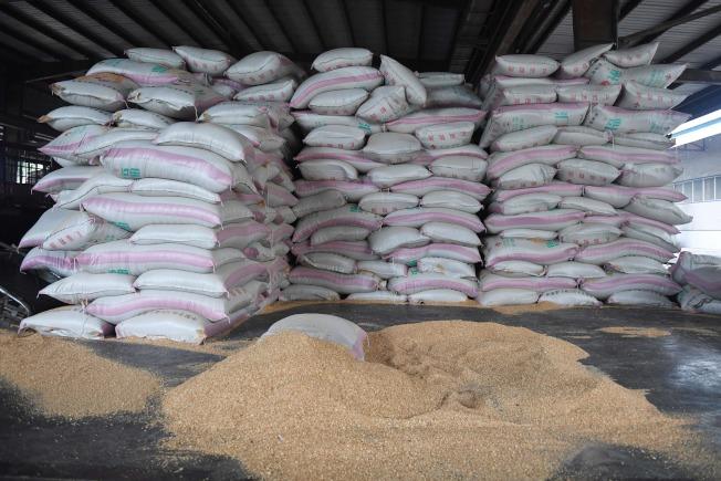 圖為中國河北省三河市的榖倉中,貯藏進口自美國的黃豆。中方承諾自美國大量進口農產品。(Getty Images)