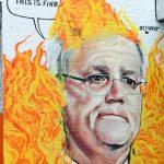 野火狂燒 無尾熊恐列瀕絕名單 澳總理支持度新低